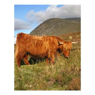 Scottish Highland Cows - Scotland Letterhead Design