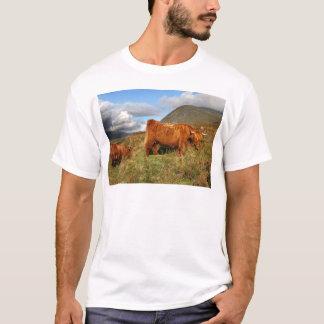 Scottish Highland Cows - Scotland T-Shirt