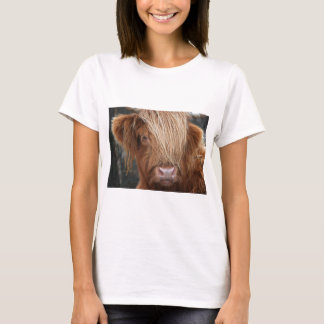 Scottish Highland Cows - Scotland T-Shirt