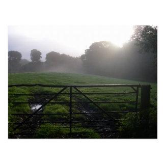 Scottish morning dew postcard