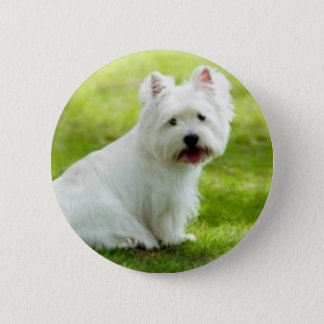 scottish terrier 2 inch round button