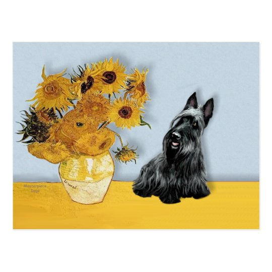 Scottish Terrier 3 - Sunflowers Postcard