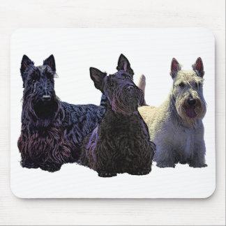 Scottish Terrier black/wheaten trio, black dog Mouse Pad