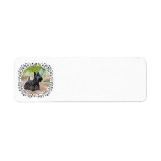 Scottish Terrier in Dappled Sunlight Return Address Label