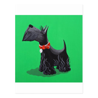 Scottish Terrier Postcard