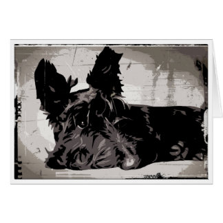 Scottish Terrier urban background Card