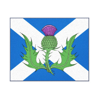 Scottish Thistle and Saltire Canvas Print