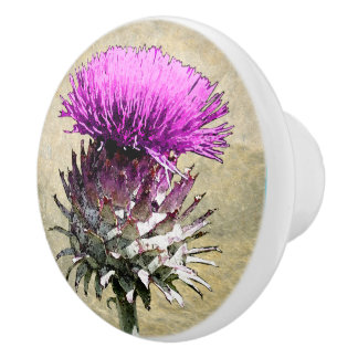 Scottish Thistle Ceramic Knob