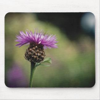Scottish Thistle Mouse mat