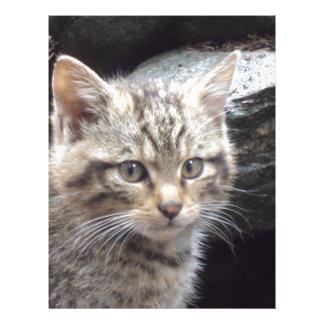 Scottish Wildcat Letterhead Template