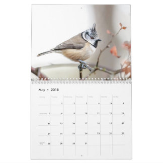 Scottish Wildlife, Wild and free Calendars