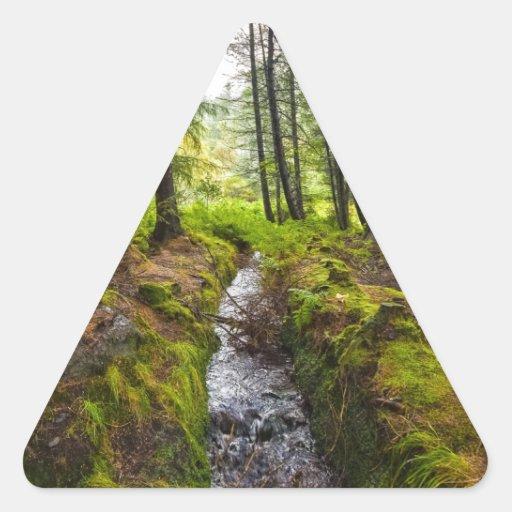 Scottish Woodland Stream Stickers