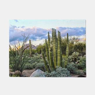 Scottsdale Succulent Sunset Doormat