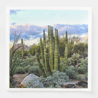 Scottsdale Succulent Sunset Paper Napkins