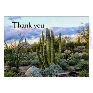 Scottsdale Succulent Sunset thank you Card