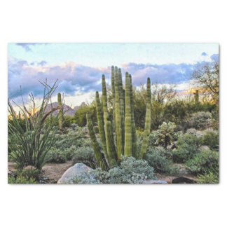 Scottsdale Succulent Sunset Tissue Paper