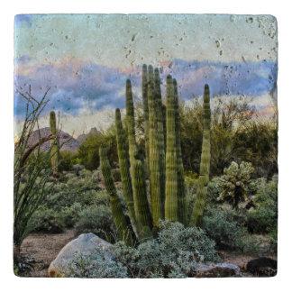 Scottsdale Succulent Sunset Trivet