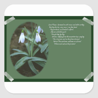 Scrap Book Snowdrops Square Sticker