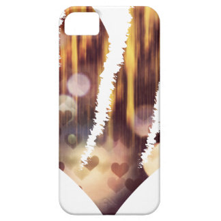 Scratch hart case for the iPhone 5