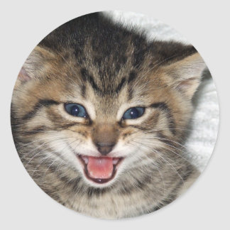 Screaming Kitty Classic Round Sticker