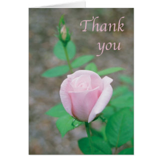 Scripture card - Thank You with light pink rose