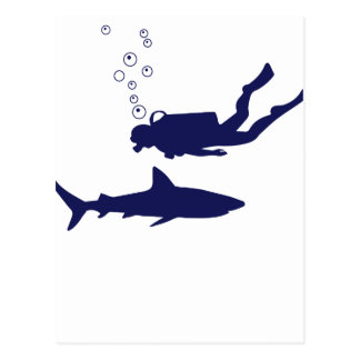 scuba diving with sharks postcard