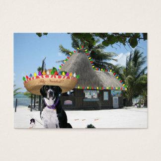 "Scuba Dog ""Diversity"" Trade Card"
