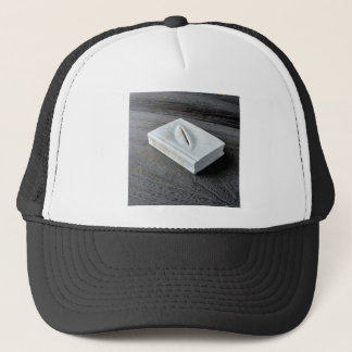 Sculptures designs trucker hat