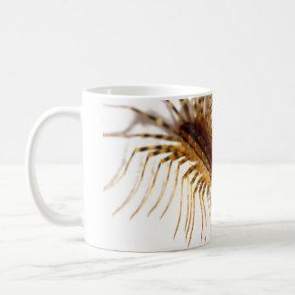 Scutigera coleoptrata coffee mug