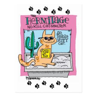 Se habla Kitty Cat- Postcard