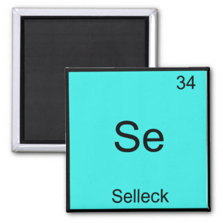 Se - Selleck Chemistry Element Symbol Funny Magnum Square Magnet