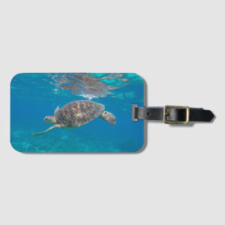 Se Turtle luggage tag