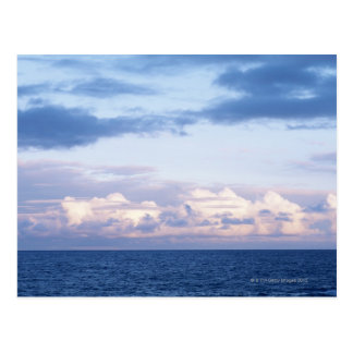 Sea 13 postcard