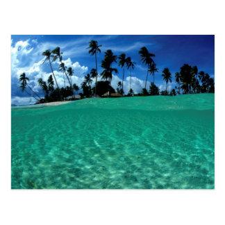 Sea And Island, Indonesia Postcard