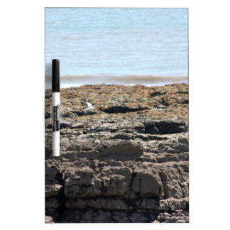 Sea and rocks Dry-Erase whiteboards