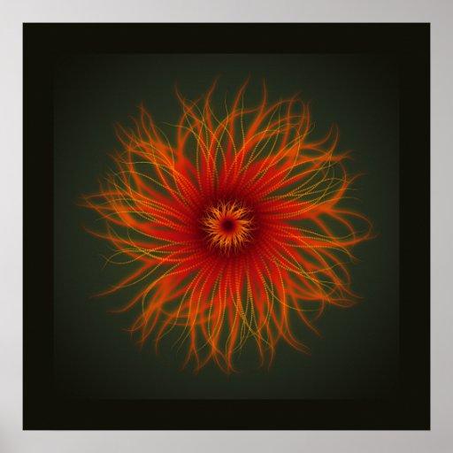 Sea Anemone - print