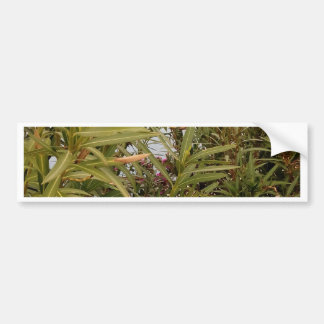 Sea behind the plants bumper sticker