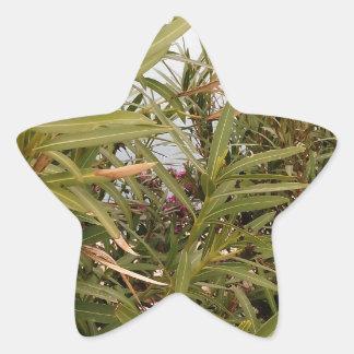 Sea behind the plants star sticker