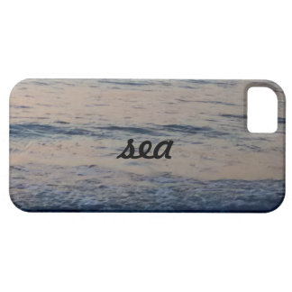 sea blue grey case for the iPhone 5