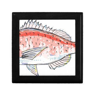 Sea Bream Red Sketch Gift Box