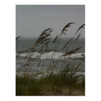 Sea Breeze Postcard