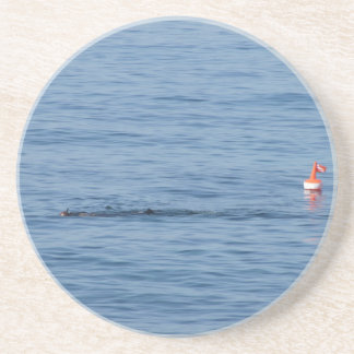 Sea diver in scuba suit swim in water coaster