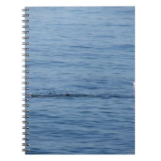 Sea diver in scuba suit swim in water notebook