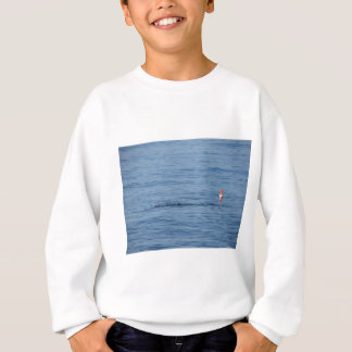 Sea diver in scuba suit swim in water sweatshirt