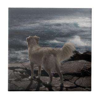 Sea Dog Tiles