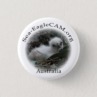 Sea-Eagle Hatchling Button
