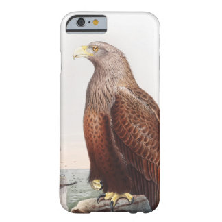 Sea Eagle John Gould Birds of Great Britain Nature Barely There iPhone 6 Case