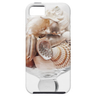 Sea glass case for the iPhone 5