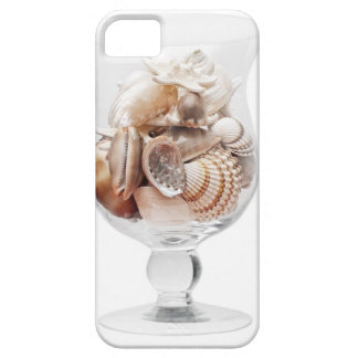 Sea glass iPhone 5 case