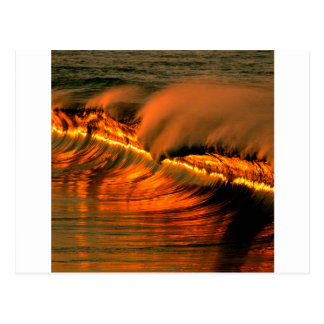 Sea Golden Wave Sunset Puerto Escondido Postcard